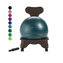 Office Exercise Chair